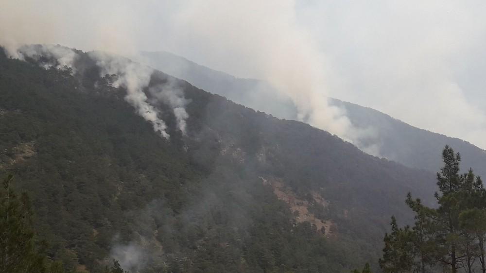Hatay'daki orman yangın söndürülemedi