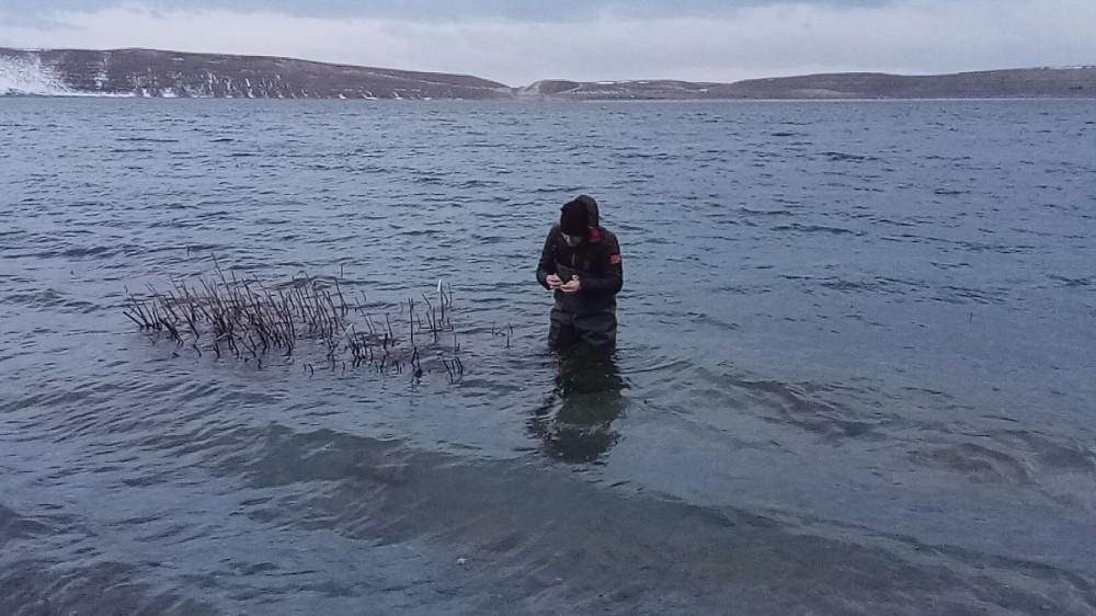 (Özel) Aygır Gölü'nde zebra midye tehlikesi
