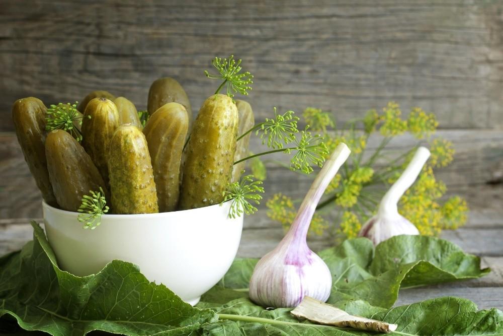 Salatalık ve kornişon ihracatının yüzde 80'i Ege'den yapılıyor