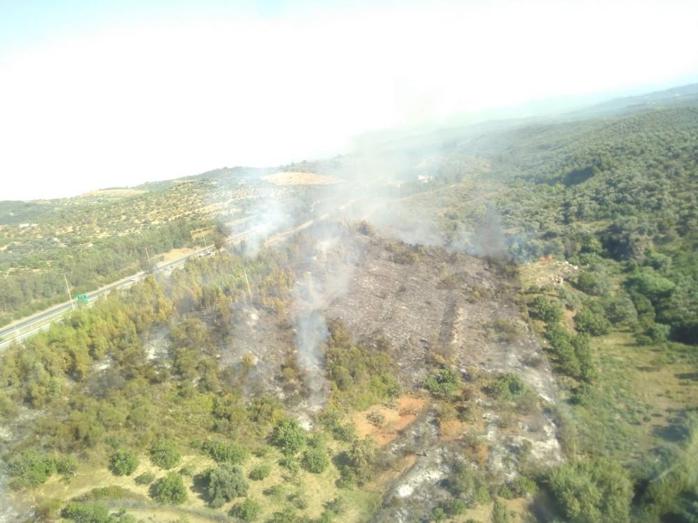 Aydın'da arazi yangını ormana sıçramadan kontrol altına alındı
