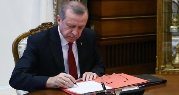 Cumhurbaşkanı Onayladı, O cezalar Yüzde 60 azalıyor