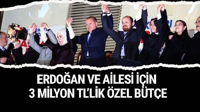 Erdoğan ve Ailesi İçin 3 Milyonluk Özel Bütçe