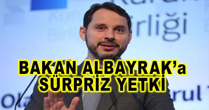 Hazine ve Maliye Bakanı Berat Albayrak'a Sürpriz Yetki