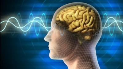 Bilim adamları gen ve beyin yapısı ile zeka arasında bağlantıyı keşfetti