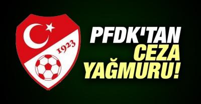 Emre Belözoğlu ve Belhanda 3 Maç Ceza Aldı