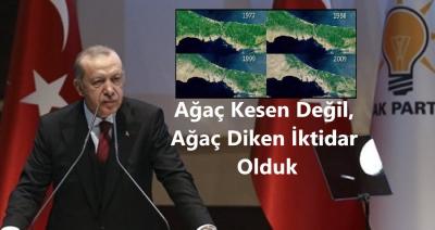 Erdoğan: ''Ağaç Kesen Değil Ağaç Diken İktidar Olduk''