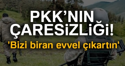 Süper Kobraları duyan PKK'lılar telsiz ile yalvardı: 'Bizi biran evvel çıkartın'